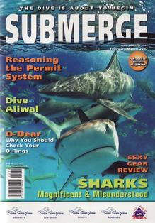 bittenbysharks, submerge cover